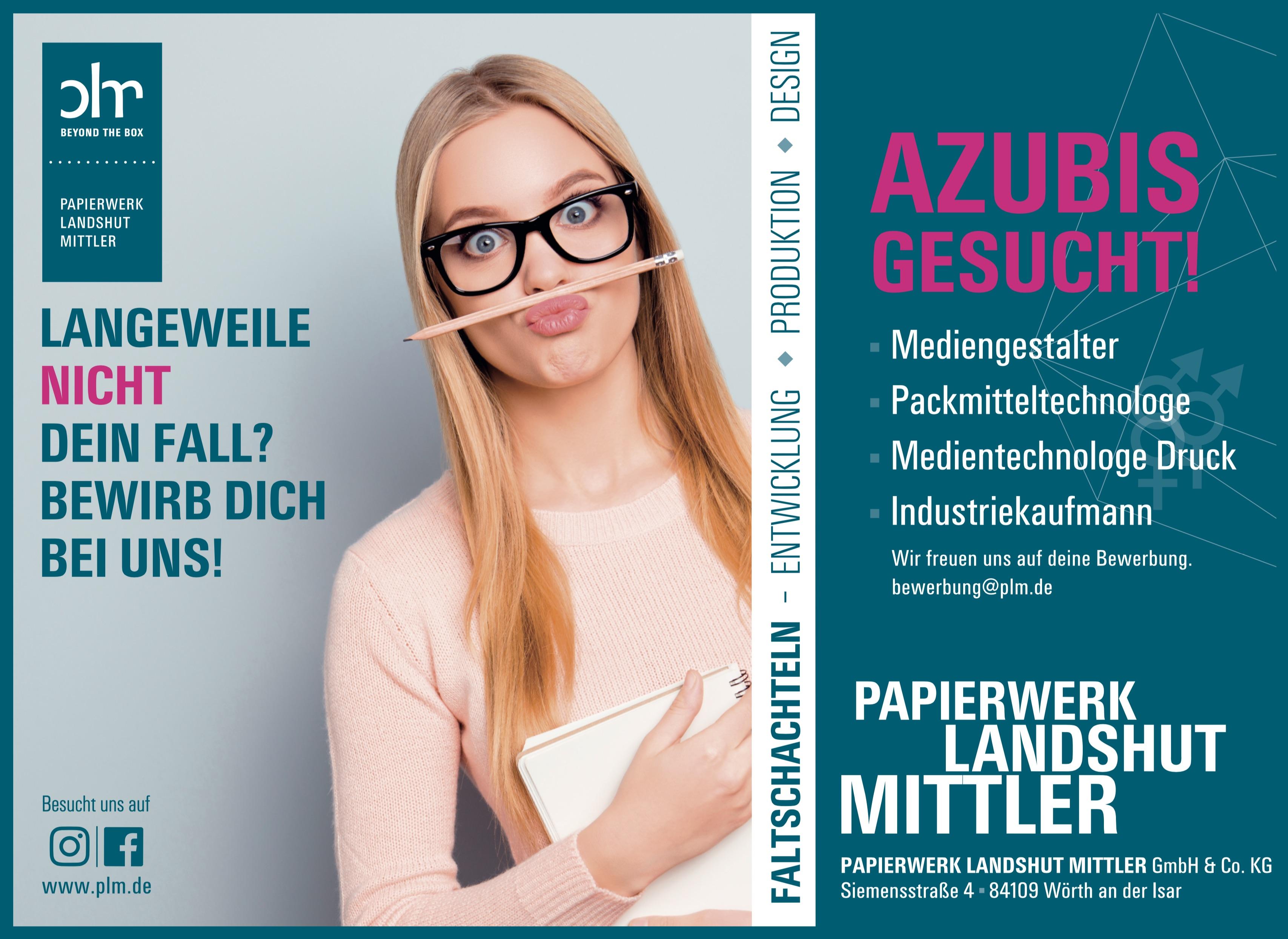 Ausbildung bei plm / Mediengestalter / Packmitteltechnologe / Industriekaufmann / Industriekauffrau / Medientechnologe Druck